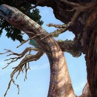 Car-sized Sarahsaurus that roamed Arizona 185m years ago hold the k