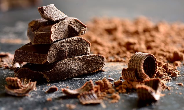 The birth of chocolate: cacao tree first appeared 3,600 years ago