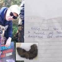Animal rights activist finds bloodied fox's tail and threat on his car