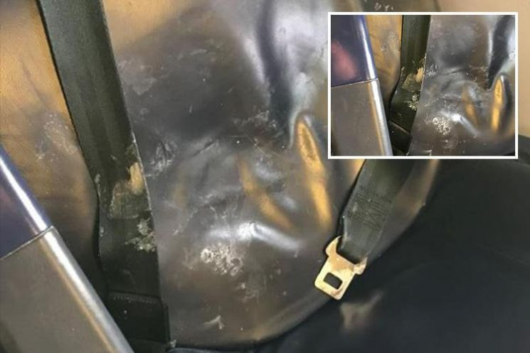 Bristol couple disgusted after finding VOMIT on Ryanair flight seats – and airline refused to clean it as it would delay the plane