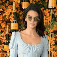 Kendall Jenner Stalker Scales Mountain To Meet Her Poolside