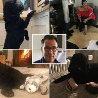 Inside Richard Arnold's stunning London home, complete with state-of-the-art kitchen and adorable dog