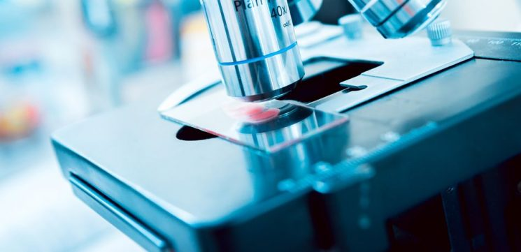 Google AI 99 Percent Accurate At Detecting Metastatic Breast Cancer