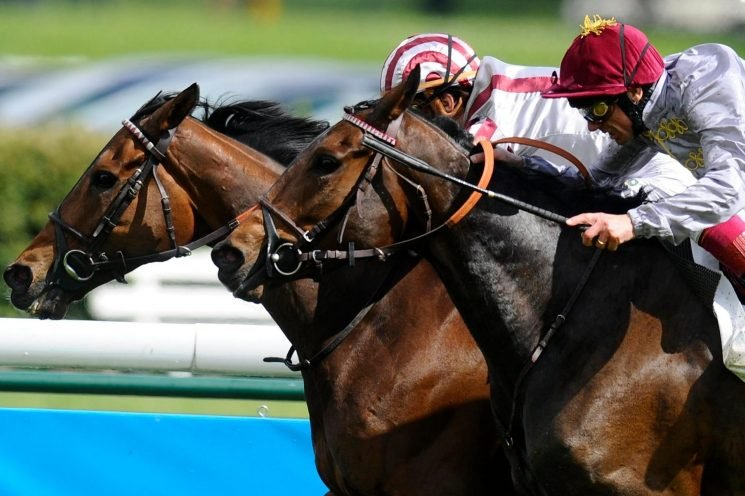 Free horse racing tips for today: Uttoxeter, Kelso and Longchamp – Steve Mullen's betting preview for Sunday, October 7