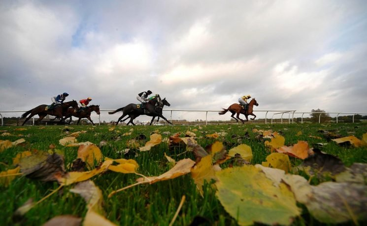 Two to watch on Wednesday: Didtheyleaveuoutto and Movewiththetimes give McManus strong Fakenham challenge