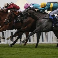 Fast horse racing results: Who won the 2.40 Champion Fillies & Mares Stakes at Ascot live on ITV?