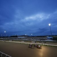 Thursday's racing tips: Two longshots to fill your pockets at Chelmsford and Wolverhampton