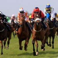 Templegate's horse racing tips: Yarmouth, Newcastle, Exeter and Kempton – Templegate's betting preview for racing on Tuesday, October 23