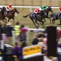Best horse racing tips: Sun Racing's top picks for today's racing at Bath, Nottingham, Newcastle and Wetherby