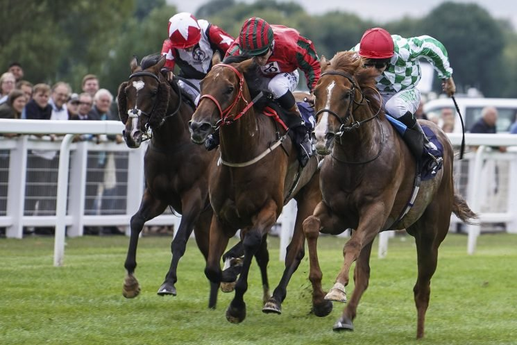 Free horse racing tips for today: Kempton, Windsor, Pontefract and Stratford – Steve Mullen's betting preview for Monday, October 8