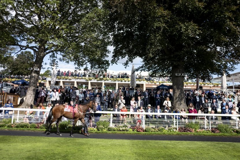 Fast horse racing results: Who won the 3.50 at York live on ITV?