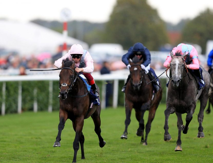 Saturday's Dewhurst Stakes betting preview: Latest runners, riders, odds and trainer quotes for the final field