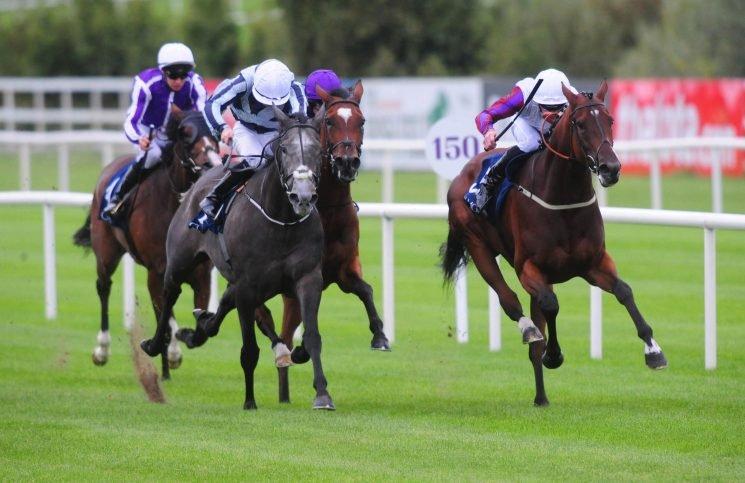 Karl Burke reckons star filly Laurens is in top form ahead of Sun Chariot bid