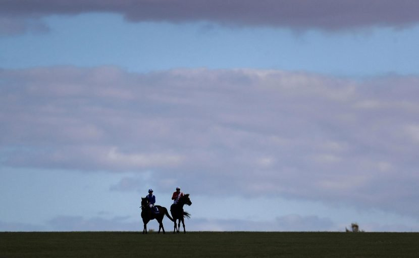 Friday's racing tips: Two longshots to fill your pockets at Newmarket and York