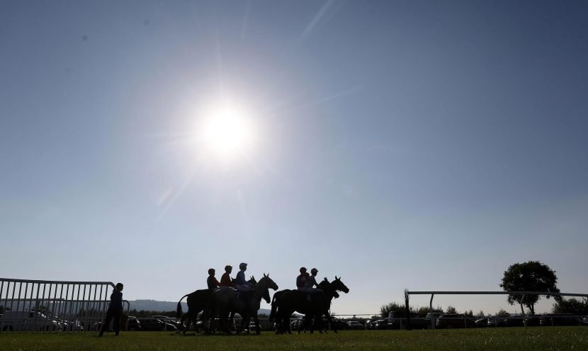 Best horse racing tips: Sun Racing's top picks for today's racing at Newton Abbot, Newmarket, York and Wolverhampton