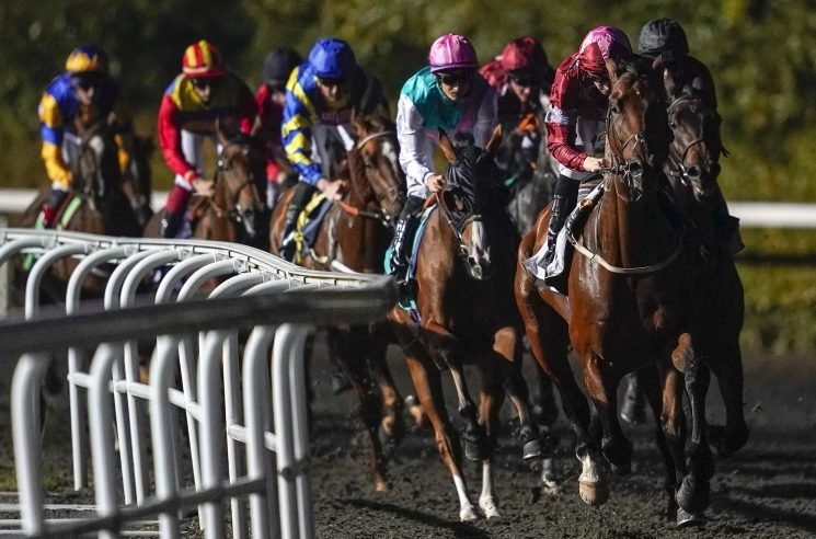 Templegate's horse racing tips: Leicester, Hereford, Huntingdon and Kempton – Templegate's betting preview for racing on Tuesday, October 16