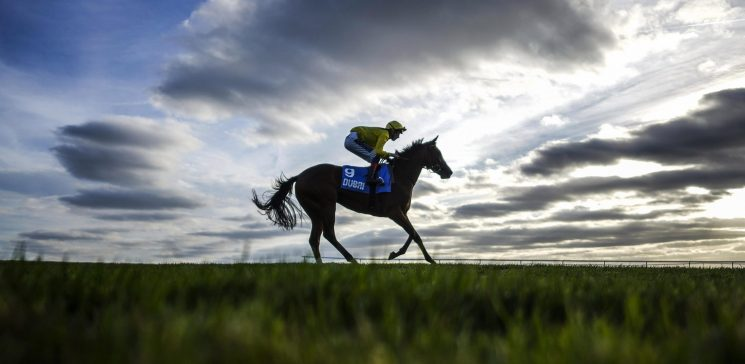 Sunday's racing tips: Two longshots to fill your pockets at Goodwood and Chepstow