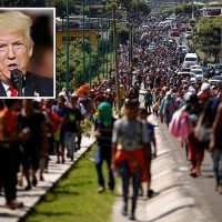 Donald Trump says migrant caravan is riddled with MS-13 gangsters and terrorists