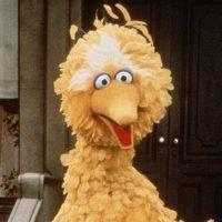 Caroll Spinney, Sesame Street's Original Big Bird, Retiring After 49 Years