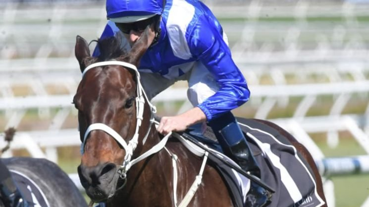 Winx soars to claim a 28th consecutive victory
