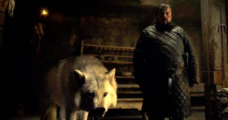 'Game of Thrones' Final Season Will Bring Back Jon's Direwolf Ghost