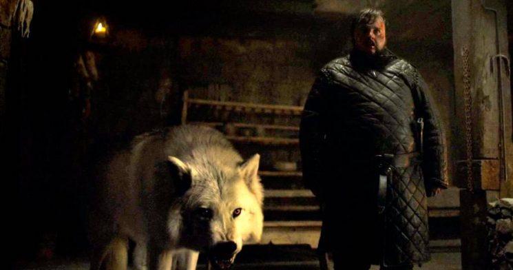 'Game of Thrones' Final Season Will Bring Back Jon's Direwolf Ghost