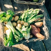 Can Eating Organic Foods Lower Your Cancer Risk? It's Complicated