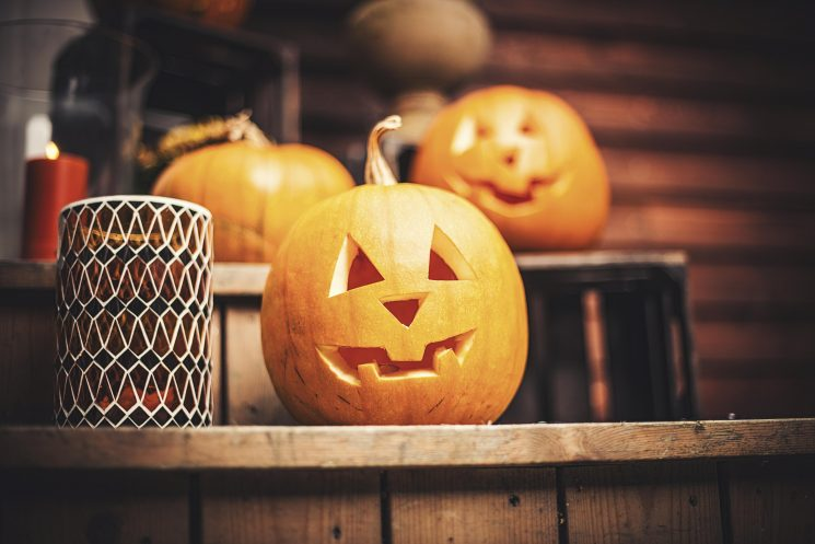 How long do Halloween pumpkins keep before and after carving and what is a white pumpkin? All you need to know