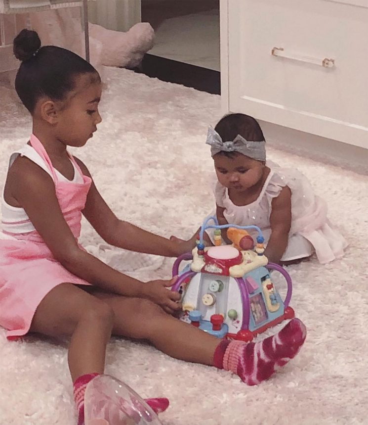 Pretty in Pink! Kim Kardashian Shares Adorable Photo of North and Cousin True Playing Together