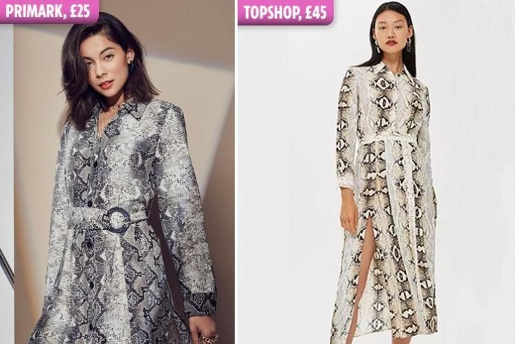 Primark is selling a dupe of THAT Topshop snakeskin midi dress for £25