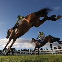 Free horse racing tips for today: Kempton and Sedgefield – The Wizard of Odds' betting preview for Sunday, October 21