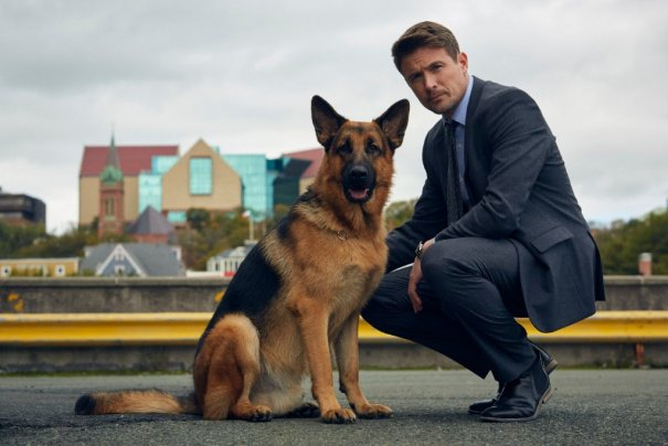 'Rex' Police Drama Based On International Series Set For Canada's Citytv