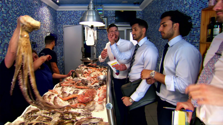 Apprentice viewers in hysterics as candidates buy an octopus instead of a piece of diving equipment