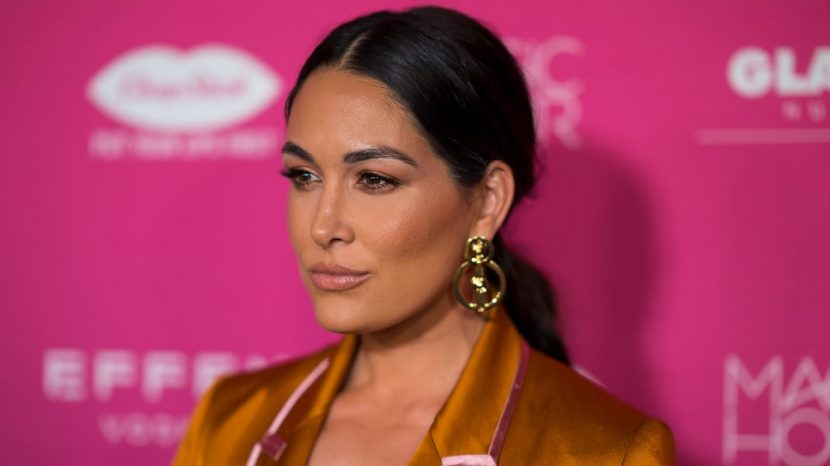 WWE Star Brie Bella Gets Real About Breastfeeding