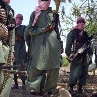 Somalia says strike killed more al-Shabaab recruits than U.S. claimed