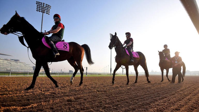 2018 Breeders Cup Classic Odds And Predictions Expert