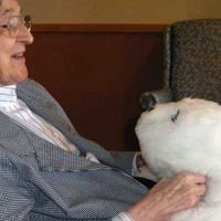 How a furry pet robot could help the fight against dementia