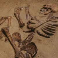 Archaeologists Have Discovered The 3,700-Year Skeletons Of An Egyptian Woman And Fetus In Aswan Grave
