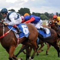 Summer specialist Red Excitement ready to shine at Rosehill