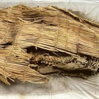 World's oldest mummy is finally laid to rest