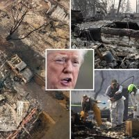 Donald Trump doubles down on blaming forest management for California wildfires as more than 1,000 people are missing feared dead