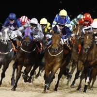 Tuesday's racing tips: Two longshots to fill your pockets at Chelmsford