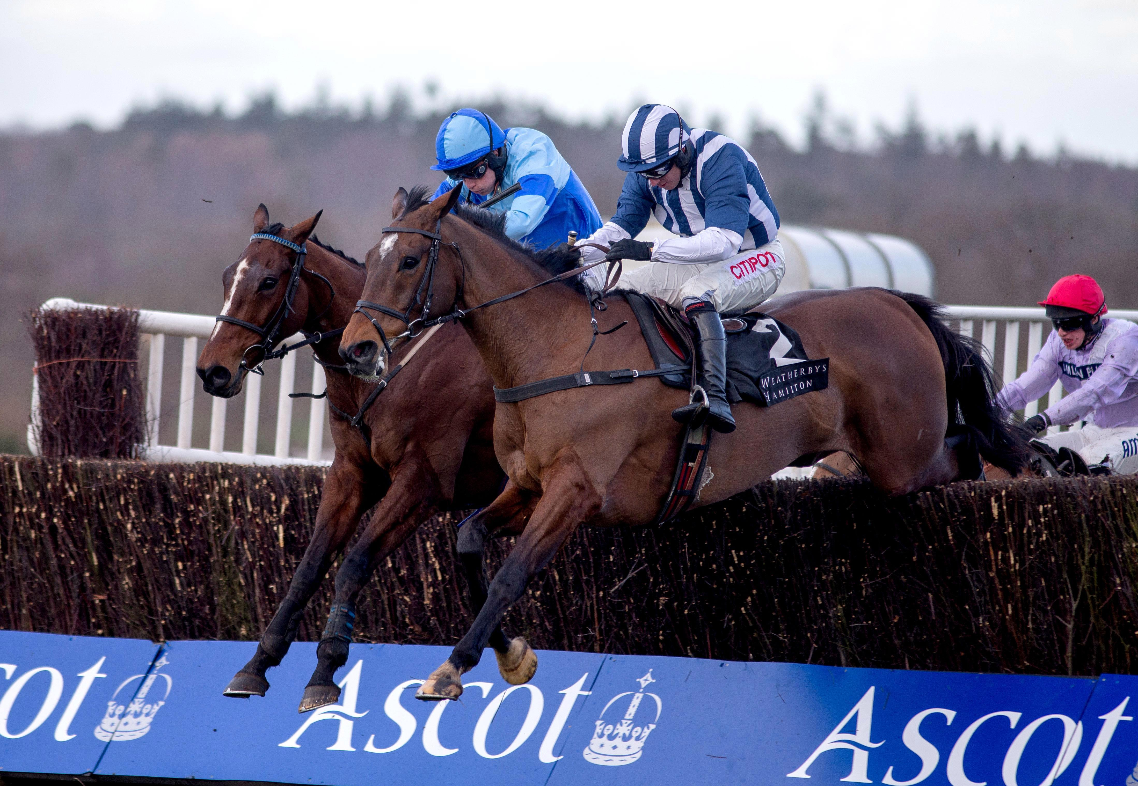 Templegate S Horse Racing Tips Sodexo Gold Cup Day At Ascot Top Betting Preview For Today S Itv Racing Wstale Com