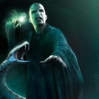 Harry Potter fans come up with a wild theory that Nagini is Voldemort's MUM
