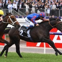Melbourne Cup 2018: Gutsy Prince Of Arran books Melbourne Cup place with emphatic Lexus win
