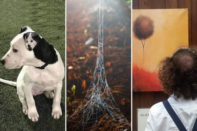 These snaps were taken at just the right moment to reveal funny coincidences in life