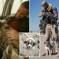 British soldier and puppy he saved from rubble in war-torn Syria reunited – but he says dog saved HIS life