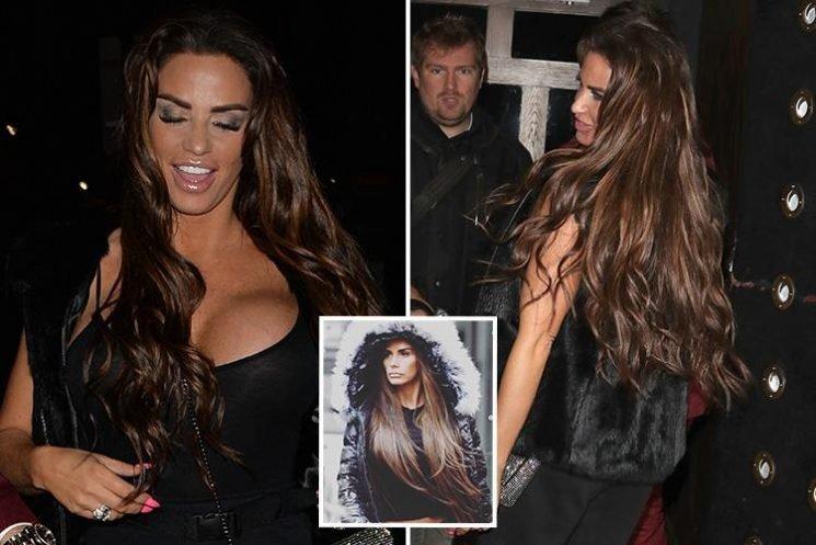Katie Price reveals new £500 brown hair extensions despite bankruptcy battle