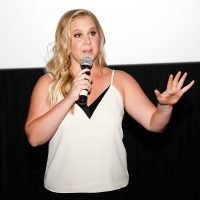 Pregnant Amy Schumer Posts Video of Herself Vomiting En Route to Show to Explain Cancellations