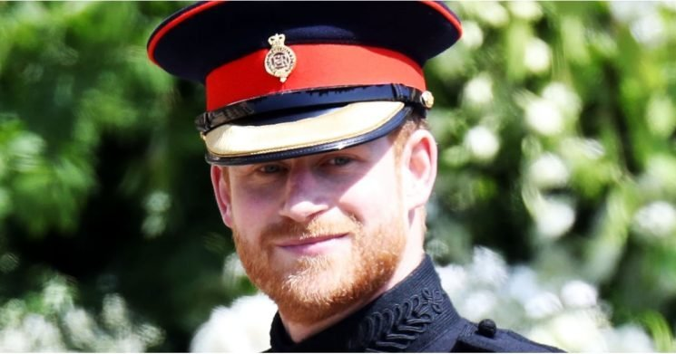23 Royal Reasons Prince Harry Is Having a Better Year Than Almost Everybody in 2018